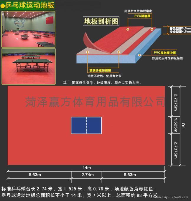 乒乓球地板 1