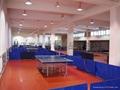 乒乓球地板 2