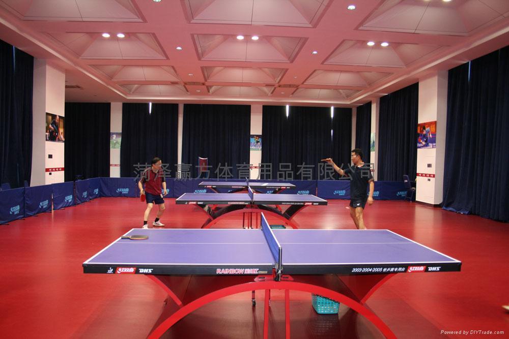 乒乓球地板 4
