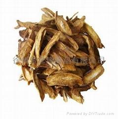 愛思康黃金牛蒡茶