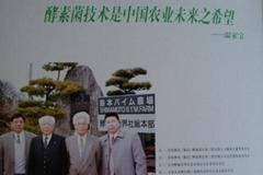 河南磐龍酵素菌生物工程有限公司