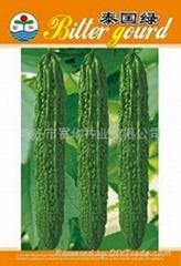 泰国绿苦瓜种