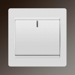S20-001 Switch