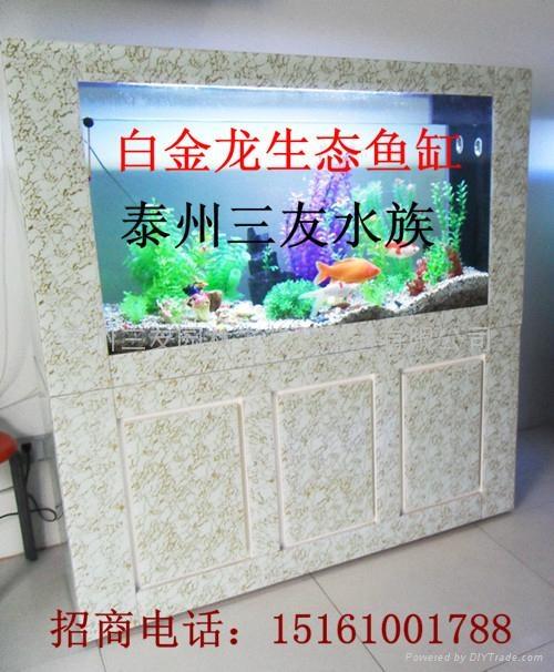 家居免换水生态水族箱 1