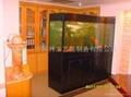 家居免换水生态水族箱 2