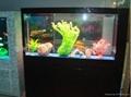 烤漆玻璃屏风式生态鱼缸 5