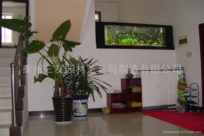 生态壁画鱼缸 3