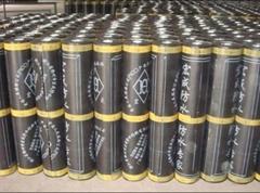 Waterproof Membrane (SBS,APP)