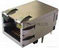 RJ45 W/LED 10/100/1000Mbps