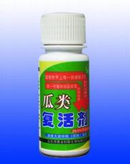瓜类复活剂