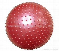 Gymnastic Ball  (HD-H03)