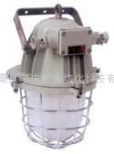 BAD51-DT系列隔爆型防爆燈(側開蓋)(ⅡB)