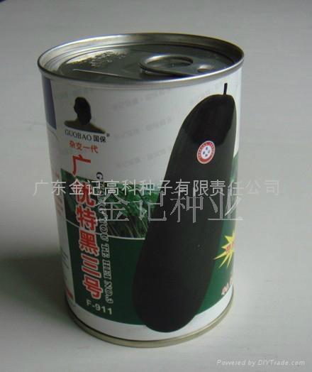 广优特黑三号黑皮冬瓜种子F-911 1