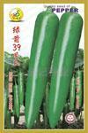 绿箭39号辣椒种子 1