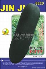 黑人一号黑皮冬瓜种子F1-777
