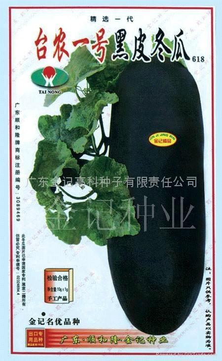 台农一号黑皮冬瓜种子618 1