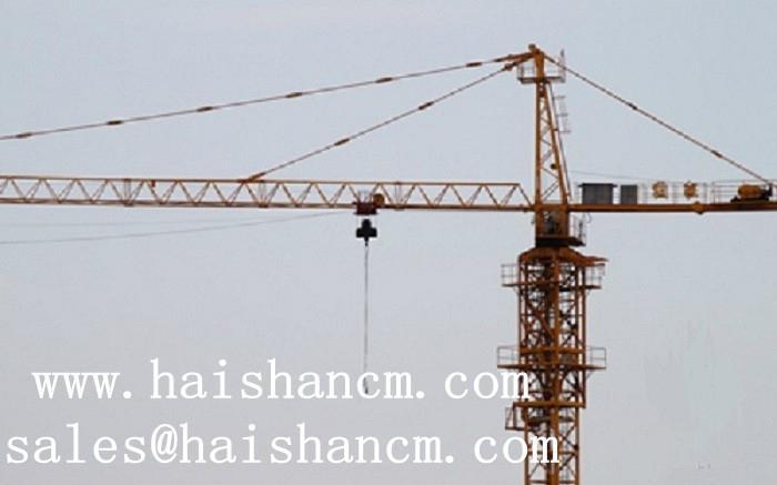 qtz63塔吊图片