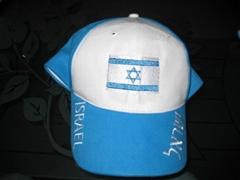 發光選舉帽