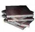 棕膜建筑模板 2