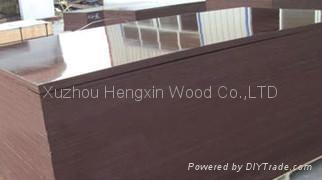 棕膜建筑模板 3
