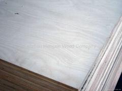桦木家具级胶合板