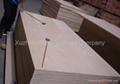 桦木家具级胶合板 2