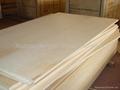桦木家具级胶合板 3