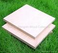 Okoume marine plywood for boat