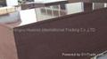 棕/黑膜建筑模板-主打产品 3