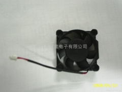 Switches cooling fan4020