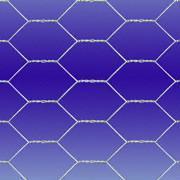 hexagonal wire netting/chicken wire
