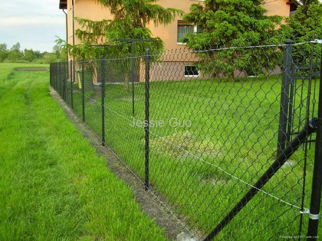 Chain link fence wire ms china manufacturer