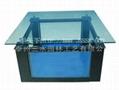 免换水生态鱼缸 4