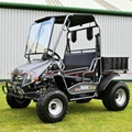 150CC UTV, Utility Vehicle, Side by Side (UTV 200)