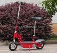 250w Electric Scooter (HP102E)