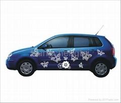 Car sticker, car decal, auto decal