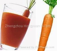 carrot puree 1