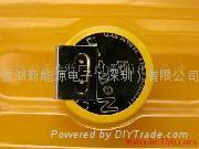CR2032 3V battery with tag PVC Tab pin