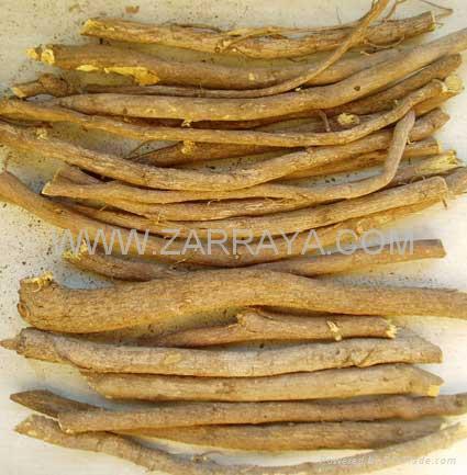 Licorice Roots 2