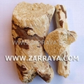 Soap Root