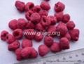 freeze dried raspberry (FD raspeberry)