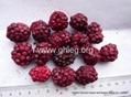 freeze dried blackberry (FD blackberry)