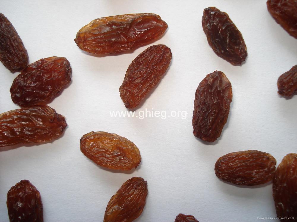 dark raisins (sultana raisins) 2