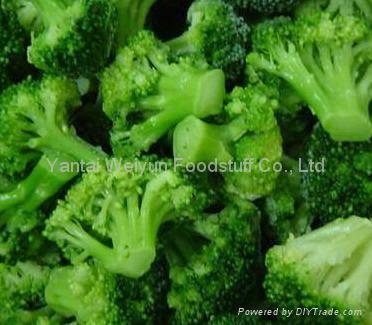 IQF Broccoli Florets 1