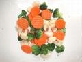 frozen Vegetable Blends /mixture