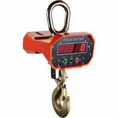 HT9800-Direct Display Electronic Crane Scale