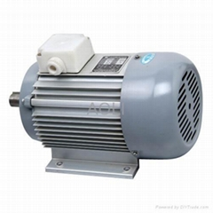 sell Alternating Induction Motor (YS-9032)
