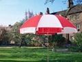 廣告太陽傘大傘