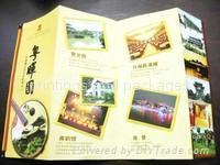 brochure printings 2