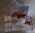 brochure printings